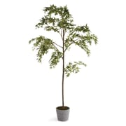 Napa Home & Garden Concretelite Maple Tree Wreath