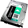 Seagate® Enterprise Capacity 6TB 3.5in. 7200 RPM SAS 3.5in. Internal Hard Disk Drive (Black)