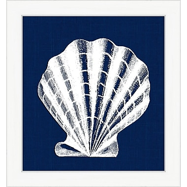 Melissa Van Hise Shell IV Framed Graphic Art