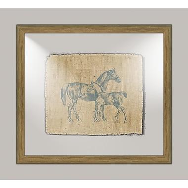 Melissa Van Hise Horse I Framed Graphic Art