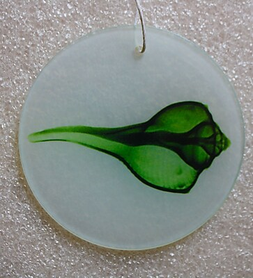 Radiant Art Studios X-ray Designs Green Shell Frosted Glass Ornament WYF078277091424