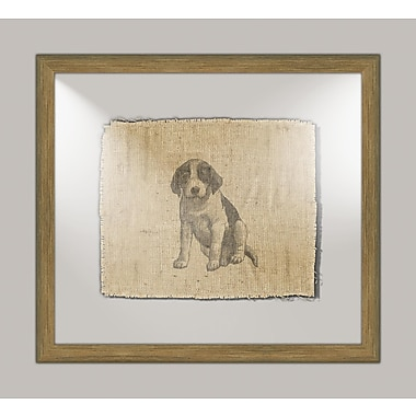 Melissa Van Hise Dog II Framed Graphic Art