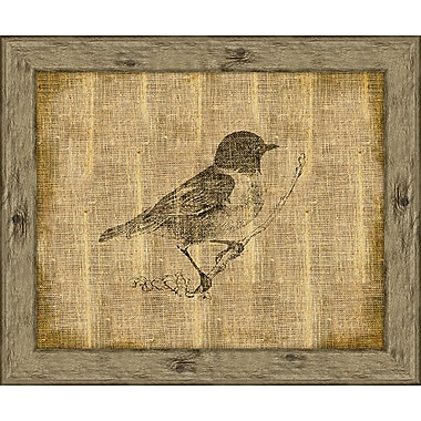 Melissa Van Hise Bird II Framed Graphic Art