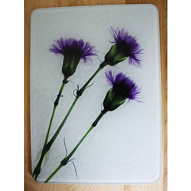 Radiant Art Studios X-ray Designs Tempered Glass Cutting Board; 8'' x 11''