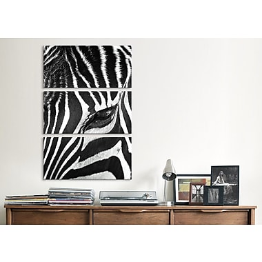 iCanvas Zebra Stare Bob Larson 3 Piece Photographic Print on Wrapped Canvas Set