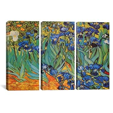 iCanvas Irises by Vincent van Gogh 3 Piece Painting Print on Wrapped Canvas Set