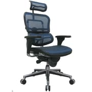 Eurotech Seating Ergohuman High-Back Mesh Managers Chair with Arms; Blue