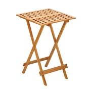 Zingz & Thingz Fold Away Table
