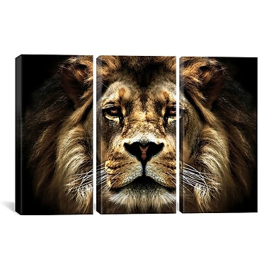iCanvas SD Smart The Lion by John James Audubon 3 Piece Photographic Print on Wrapped Canvas