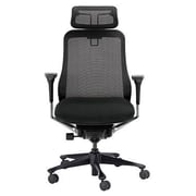 Eurotech Seating Symbian Mesh Manager Chair; Black with Black Frame