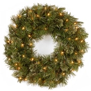 National Tree Co. Wispy Willow Lighted Wreath with 50 Clear Lights