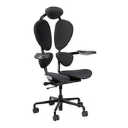 Eurotech Seating Chakra Executive Chair; Gray