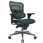 Eurotech Seating Ergohuman Mid-Back Mesh Chair with Arms; Green