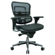 Eurotech Seating Ergohuman Mid-Back Mesh Chair with Arms; Black