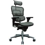 Eurotech Seating Ergohuman High-Back Mesh Managers Chair with Arms; Gray