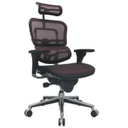 Eurotech Seating Ergohuman High-Back Mesh Managers Chair with Arms; Red