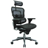 Eurotech Seating Ergohuman High-Back Mesh Managers Chair with Arms; Black