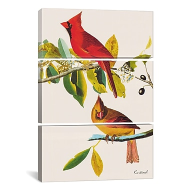 iCanvas Cardinal by John James Audubon 3 Piece Painting Print on Wrapped Canvas Set
