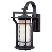 Maxim Lighting Oakville EE 1-Light Outdoor Wall Lantern; 14.25'' H x 8'' W x 10'' D