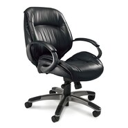 Mayline Series 100 Mid-Back Office Chair; Black