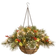 National Tree Co. Wintry Pine Pre-Lit Round Hanging Basket