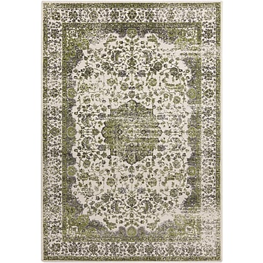 Surya Aberdine ABE8006-76106 Machine Made Rug, 7'6