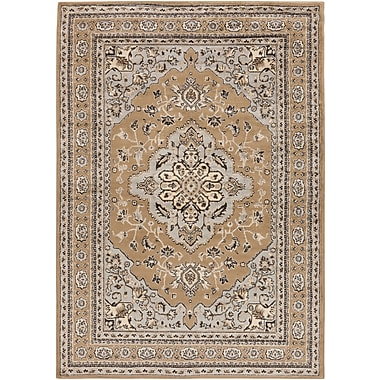 Surya Paramount PAR1056-5376 Machine Made Rug, 5'3