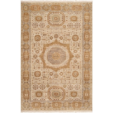 Surya Cambridge CMB8001-5686 Hand Knotted Rug, 5'6
