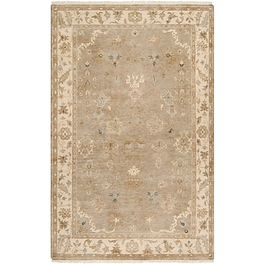 Surya Transcendent TNS9000-5686 Hand Knotted Rug, 5'6