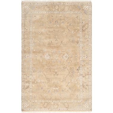 Surya Transcendent TNS9002-5686 Hand Knotted Rug, 5'6