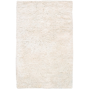 Surya Ashton ASH1300-58 Hand Woven Rug, 5' x 8' Rectangle