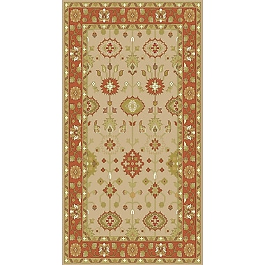 Surya Antique ATQ1009 Hand Knotted Rug