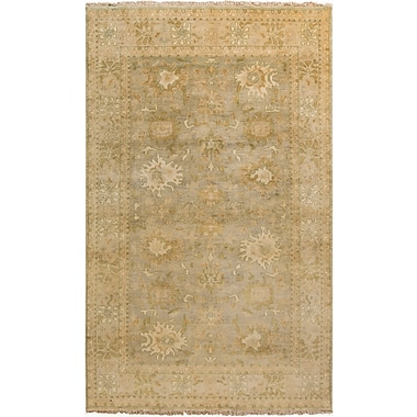 Surya Hillcrest HIL9024-5686 Hand Knotted Rug, 5'6