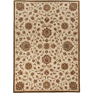 Surya Kensington KEN1044-579 Hand Tufted Rug, 5' x 7'9
