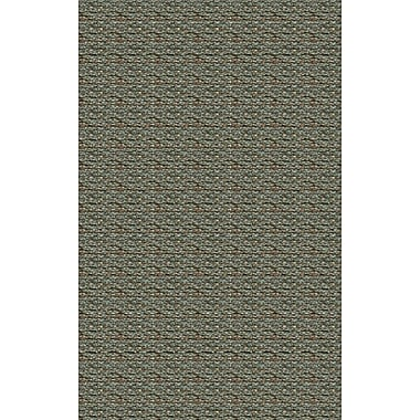 Surya Grasshopper GRS2002-23 Hand Woven Rug, 2' x 3' Rectangle