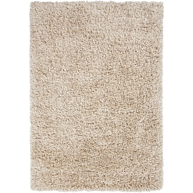 Surya Rhapsody RHA1002-58 Hand Woven Rug, 5' x 8' Rectangle