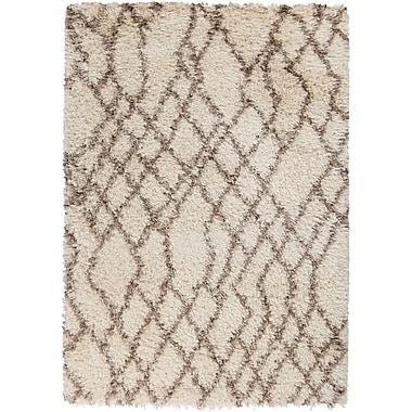 Surya Rhapsody RHA1022-912 Hand Woven Rug, 9' x 12' Rectangle