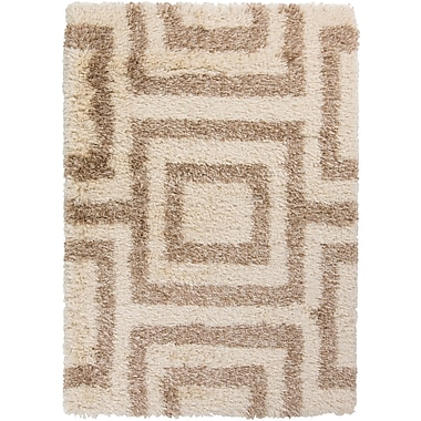 Surya Rhapsody RHA1026-58 Hand Woven Rug, 5' x 8' Rectangle