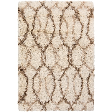 Surya Rhapsody RHA1031-23 Hand Woven Rug, 2' x 3' Rectangle