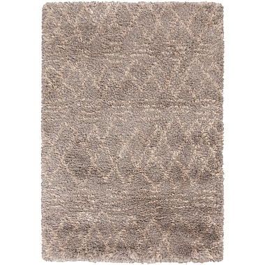 Surya Rhapsody RHA1032-23 Hand Woven Rug, 2' x 3' Rectangle
