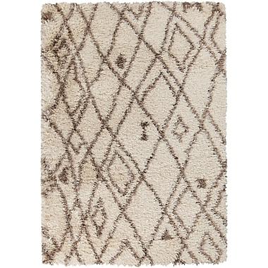 Surya Rhapsody RHA1020-58 Hand Woven Rug, 5' x 8' Rectangle