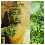 Oriental Furniture Draped Buddha Photographic Print on Wrapped Canvas