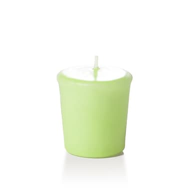 Yummi Unscented Votive Candles, Mint, 15-Hour, 144 Candles/Box