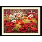 "Amanti Art ""Meadow Poppies II"" Framed Art Print by Lucas Santini, 31.13""H x 42.63""W"