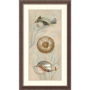Amanti Art Ocean Companions II Framed Art Print by Deborah Devellier, 32.25H x 18.5W