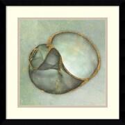 "Amanti Art ""Neptune's Garden IV"" Framed Art Print by Bert Myers, 17.13""H x 17.13""W"