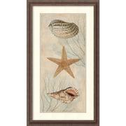 Amanti Art Ocean Companions I Framed Art Print by Deborah Devellier, 32.25H x 18.5W