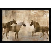 "Amanti Art ""Horse Sense"" Framed Art Print by Jason Mann, 26.63""H x 38.63""W"