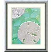 "Amanti Art ""Seaglass 5"" Framed Art Print by Alan Blaustein, 20""H x 17""W"