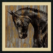 "Amanti Art ""Horse I"" Framed Art Print by Martin Rose, 34""H x 34""W"